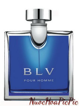 nước hoa nam blv pour homme edt (2001)